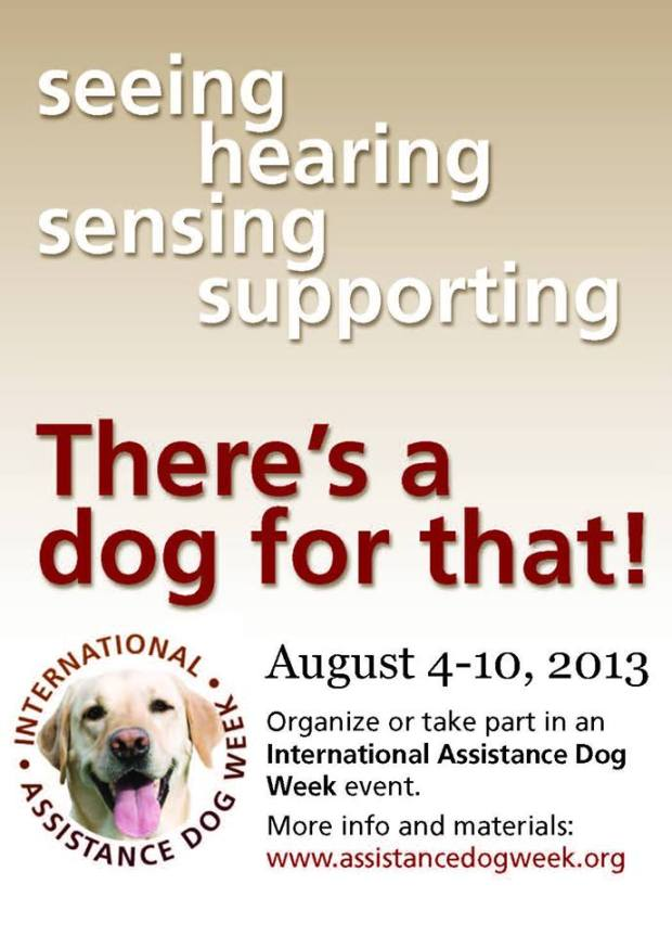 International Assistance Dog Week: There's a dog for that!